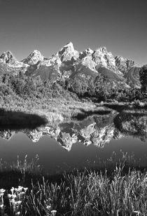 USA, Wyoming, Grand Teton National Park von Danita Delimont