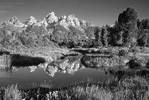 USA, Wyoming, Grand Teton National Park by Danita Delimont