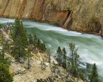 USA, Wyoming, Yellowstone National Park, Grand Canyon of the... von Danita Delimont