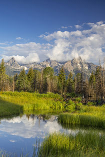 Grand Teton by Danita Delimont