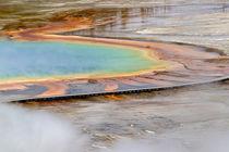 Grand Prismatic Spring, Midway Geyser Basin, Yellowstone Nat... von Danita Delimont