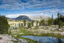 Alaska Basin Lakes, Targhee National Forest, Wyoming by Danita Delimont