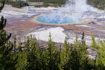 Grand Prismatic Geyser, Midway Geyser Basin, Yellowstone Nat... von Danita Delimont