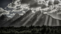 Cathedral Group, Grand Tetons _ von Danita Delimont