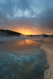 Usa, Wyoming, Yellowstone National Park by Danita Delimont