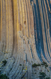 USA, Wyoming, Devil's Tower National Monument detail of colu... by Danita Delimont