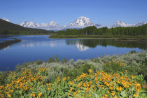 Grand Tetons from the Oxbow, Grand Teton National Park, Wyoming, USA by Danita Delimont