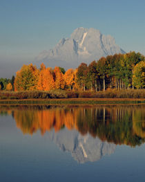 Autumn morning at the Oxbow, Grand Teton National Park, Wyoming, USA. by Danita Delimont
