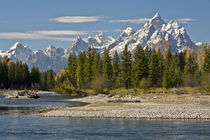 Pacific Creek, Moran Junction, Grand Teton National Park, Wyoming, USA von Danita Delimont