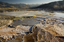 Mammoth Hot Springs, Yellowstone National Park, Wyoming, USA von Danita Delimont