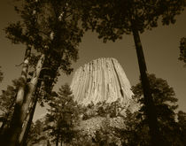 USA, Wyoming, Hulett, Devil's Tower National Monument at dusk by Danita Delimont