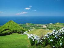 Azores landscape by Gaspar Avila