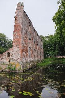 Schlossruine by Thomas Matzl