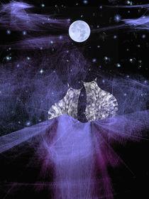 Weißt Du wie viel Sternlein stehen ...... von Chris Berger