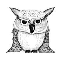 grumpy owl by Sabrina Ziegenhorn
