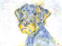 Terrier, bunt von Bettina Kröger