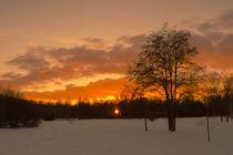Winterabend im Wuhletal  von Christoph  Ebeling