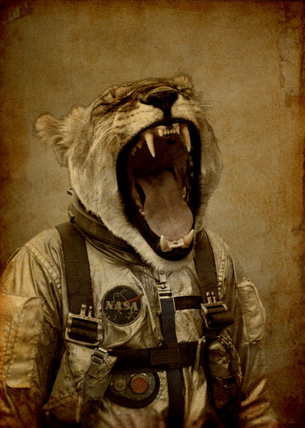 Space-roarrr