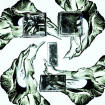 Ice Cube Flower Face von Alexander Grumeth