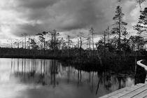 Estland Lahemaa National Park 2 von domi