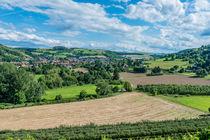 Disibodenberg-Blick auf Odernheim 39 von Erhard Hess