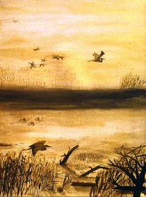 Vogelbeobachtung bei Sonnenuntergang II by terra-de-arte