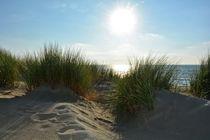 Sonne über den Dünen an der Nordseeküste von Claudia Evans