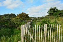 Zaun in Dünenlandschaft von Claudia Evans