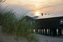Das Strandhaus in den Dünen von Claudia Evans