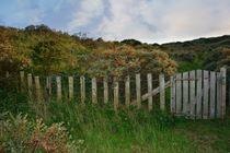 Zaun im Dünen Hinterland von Claudia Evans