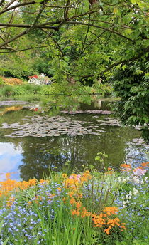 Garden with water lilies von Maria Preibsch