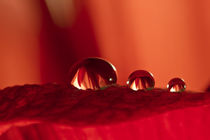 three red drops by lightart