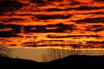 Der Himmel brennt von Martina  Gsöls