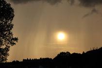Regen bei Sonnenschein by Martina  Gsöls