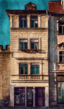 Das kleine Stadthaus von Barbara Pfannstiel