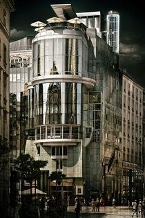 Haashaus by Barbara Pfannstiel