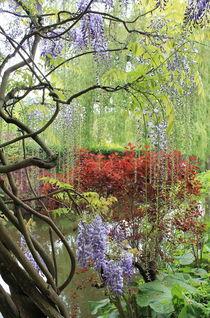 Garden with lilacs von Maria Preibsch