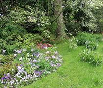 Garden  von Maria Preibsch
