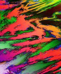 Thinking skies red von Keith Mills