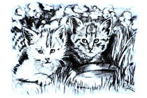 Baby Cats In Blue And White by gittag74