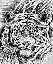 'King Of The Jungle In Black And White' by gittag74