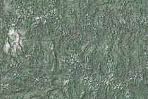 Green Relief Pattern Abstract von gittag74