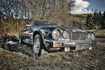 Jaguar Zyklus I von Ingo Mai