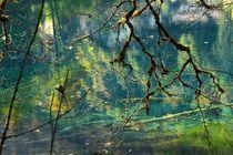 Herbstwasser by fostern