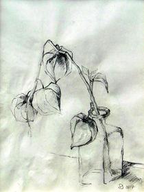 Zeichnung von alfons niex