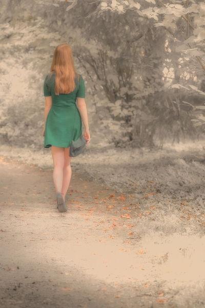 Autumn-leaves-fin-1-von-1