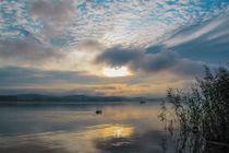 'Sommermorgen auf der Insel Reichenau - Bodensee' von Christine Horn