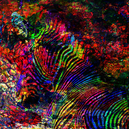 Abstract-zebra-25mb