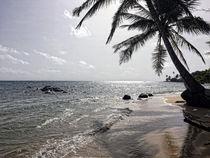 Strand Silhouette von travelwithpassion