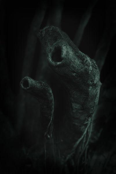 Darkness-0762-apertio